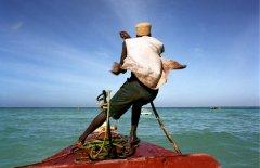 Dan Young - Boatsman Zanzibar