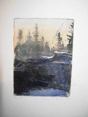 Lars Lerin - Djur och Natur - koldnål med akvarell