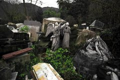 Dan Young - Fallen Angels - Foto