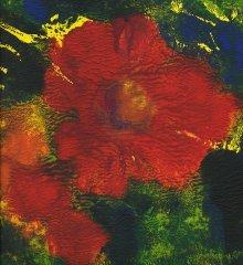 Liz Bowman - Hibiscus I - jetprint