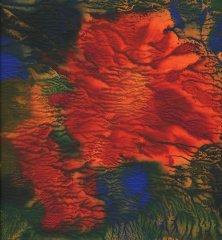Liz Bowman - Hibiscus IV - jetprint