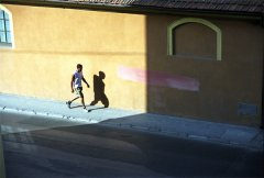 Dan Young - Walking in Color - foto